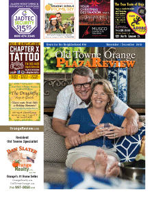 Old Towne Orange Plaza Review