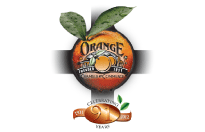 Orange Chamber of Commerce Profit Connection Networking Event